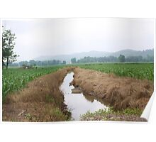 DRAINAGE DITCH THROUGH THE CORN FIELD Poster