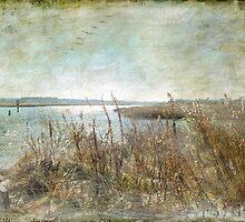 Wind Swept by Susan Werby