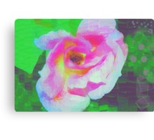 Everyman's rose abstract Canvas Print