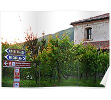 Valdobbiadene Vineyards Poster