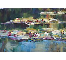 Lily Pond close up 1 Photographic Print