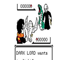 Dark Lord Wants to figth by salk