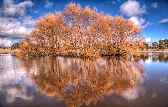 Snowy Mountain Reflections - Nimmitabel NSW - The HDR Experience by Philip Johnson