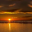 Sunset at Port - Portarlington Victoria by Graeme Buckland