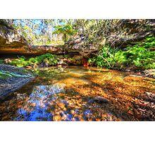 Fern Tree Pool Photographic Print