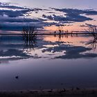 Lake Menindee by Chris Brunton