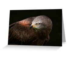 ..a Bird with Class.. [FEATURED] Greeting Card