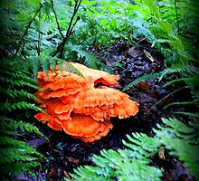 Centerpiece of Orange Amid the Green by TrendleEllwood