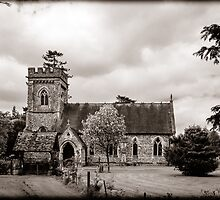 St Barnabas Faccombe by mlphoto