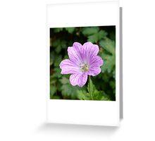 Purple Veins Greeting Card
