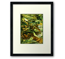 Play with the dragon Framed Print