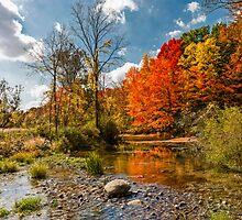 Autumn Afternoon by Wib Dawson