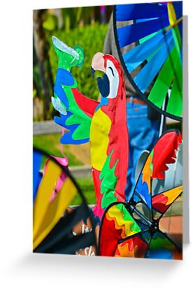 Pinwheel Parrots and Margaritas by Thomas Barker-Detwiler