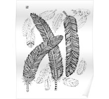 Black and Grey Feathers Poster