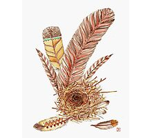 Feather Your Nest  Photographic Print