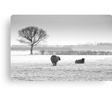 Snow scene with sheep Canvas Print
