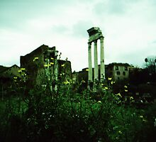Flower Power - Lomo by chylng