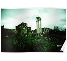 Flower Power - Lomo Poster