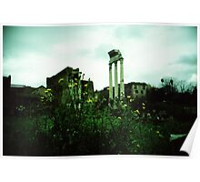 Flower Power - Lomo Poster