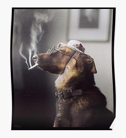 """Alex"" the Smoking Police Dog Poster"