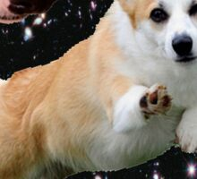 corgis in space Sticker