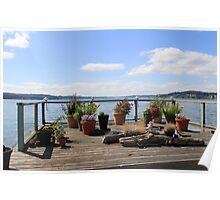 Deck Garden on the Puget Sound Poster