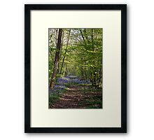 The Bluebell Path Framed Print