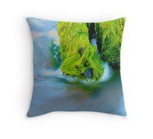 Sea Foam Green Throw Pillow