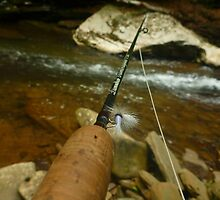 Fly, Rod, and Stream by Chad Burrall