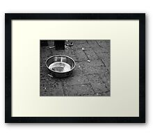Friend's Bowl Framed Print