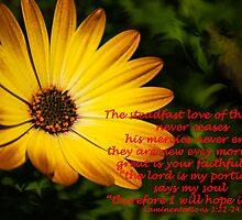 Lamentations 3:22 (day 2) by tonysphotospot