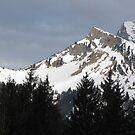 Snow Laden Tirol by M-EK