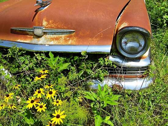 Old Car and New Flowers by WildestArt