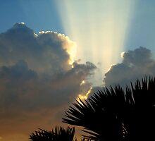 Cuban Skies 2 by Elfriede Fulda