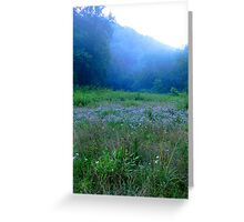 Dusk and Crown Vetch Greeting Card