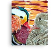 Mandarin Ducks in Love Canvas Print