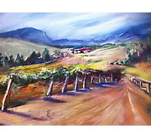 Winery in Australia Photographic Print