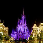 Cinderella Castle at Night - Natural by AtDisneyAgain