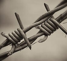 Barbed by Paul Earl