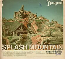 Splash Mountain by homework
