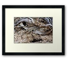 Dragon's Lair Framed Print