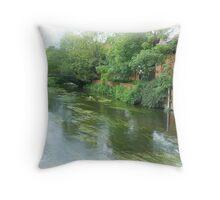 River Avon at Salisbury Throw Pillow