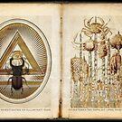 Arcane Aide-Memoire 'I' by RichardSmith