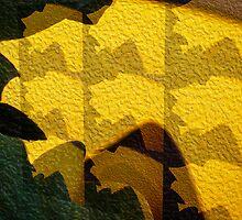 Leaf Shadow by Wib Dawson
