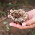 Tiny Nest by godtomanydevils