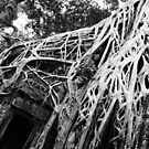 Ta Prohm by godtomanydevils