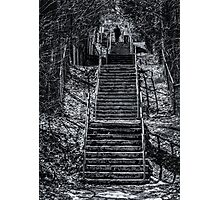Ravine Walkers Photographic Print