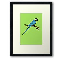 Pixel / 8-bit Parrot: Blue and Gold Macaw Framed Print