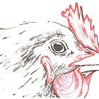 Chicken head by drknice