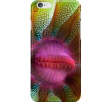 Cup Coral Portrait iPhone Case/Skin